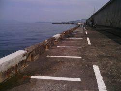 北港釣り公園ヒラメ